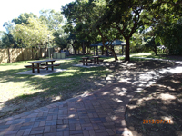 tom jeffrey park